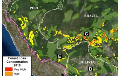 MAAP: First large-scale Western Amazon Analysis