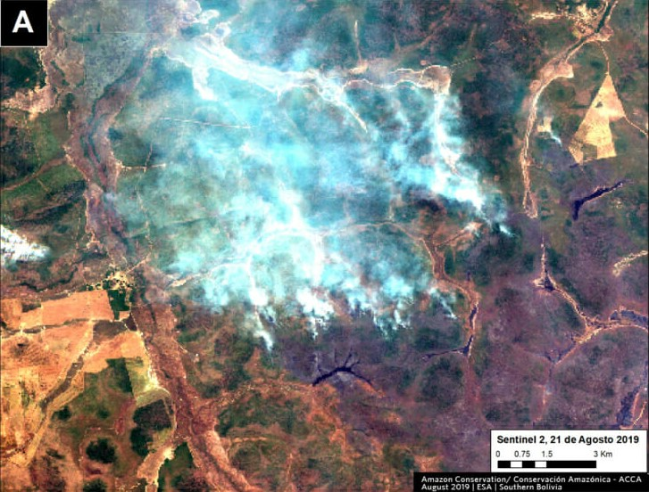What is going on with the Fires in the southwestern Amazon? A short assessment by SERVIR-Amazonia