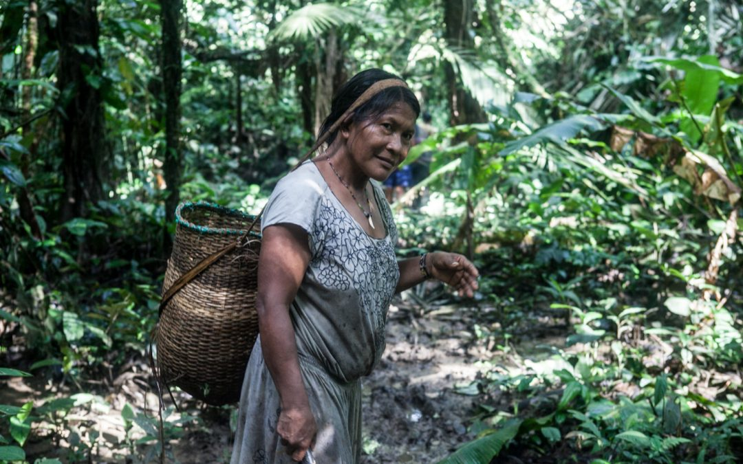 SERVIR-Amazonia recruits short-term gender consultant