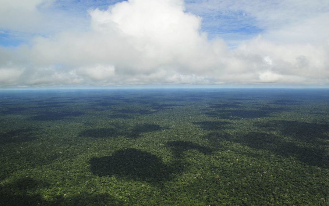 Increasing conservation of Amazon forests with Geospatial Software