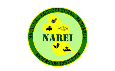 Guyana's NAREI seeks high tech solutions with SERVIR-Amazonia to better manage its fragile mangrove environment